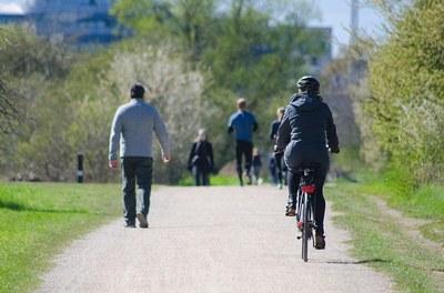 vélo dans parc