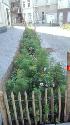eau   jardin de pluie rue de l'eau