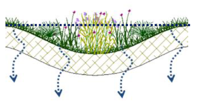 eau   principe jardin de pluie