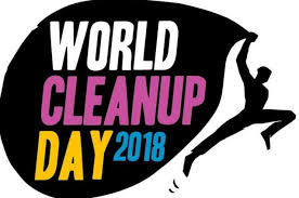 World cleanup day 2018